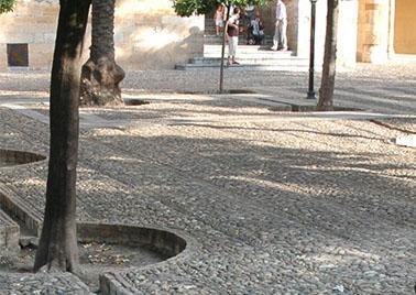 L'eau, le sol et la cité