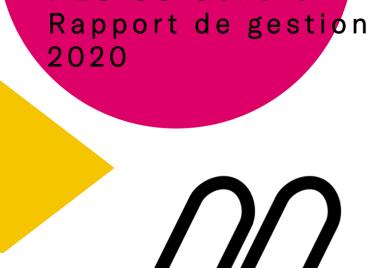 Rapport de gestion 2020