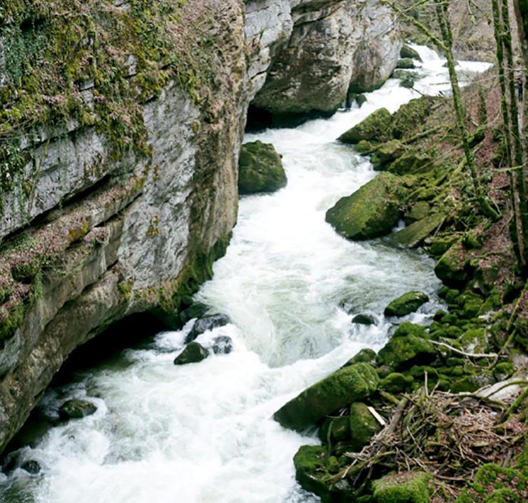 PHOTO rivière pour le concours «Regards citoyens sur l'eau, du Léman au massif jurassien»