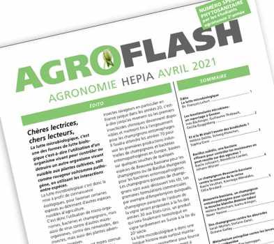 Agroflash 24