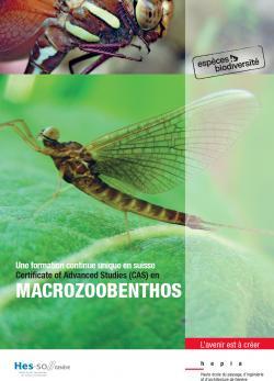 Visuel CAS Macrozoobenthos