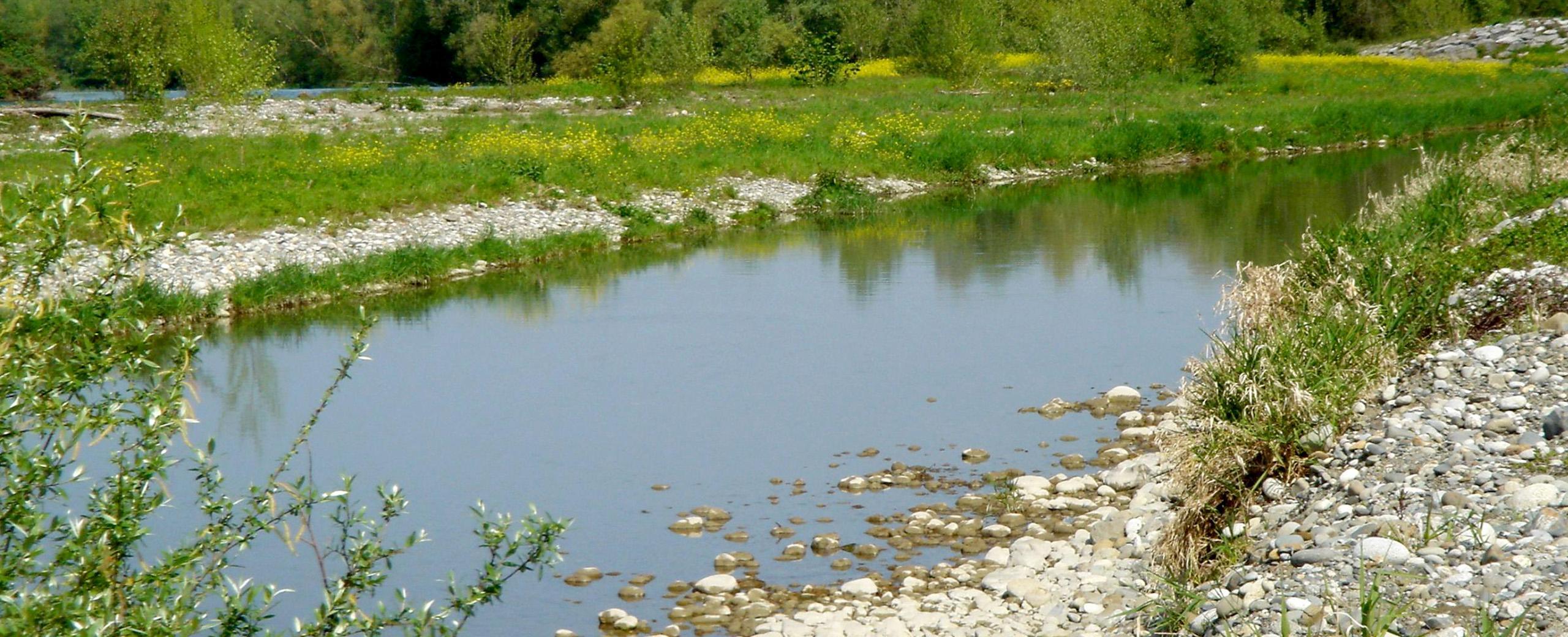 Diagnostic écologique des écosystèmes