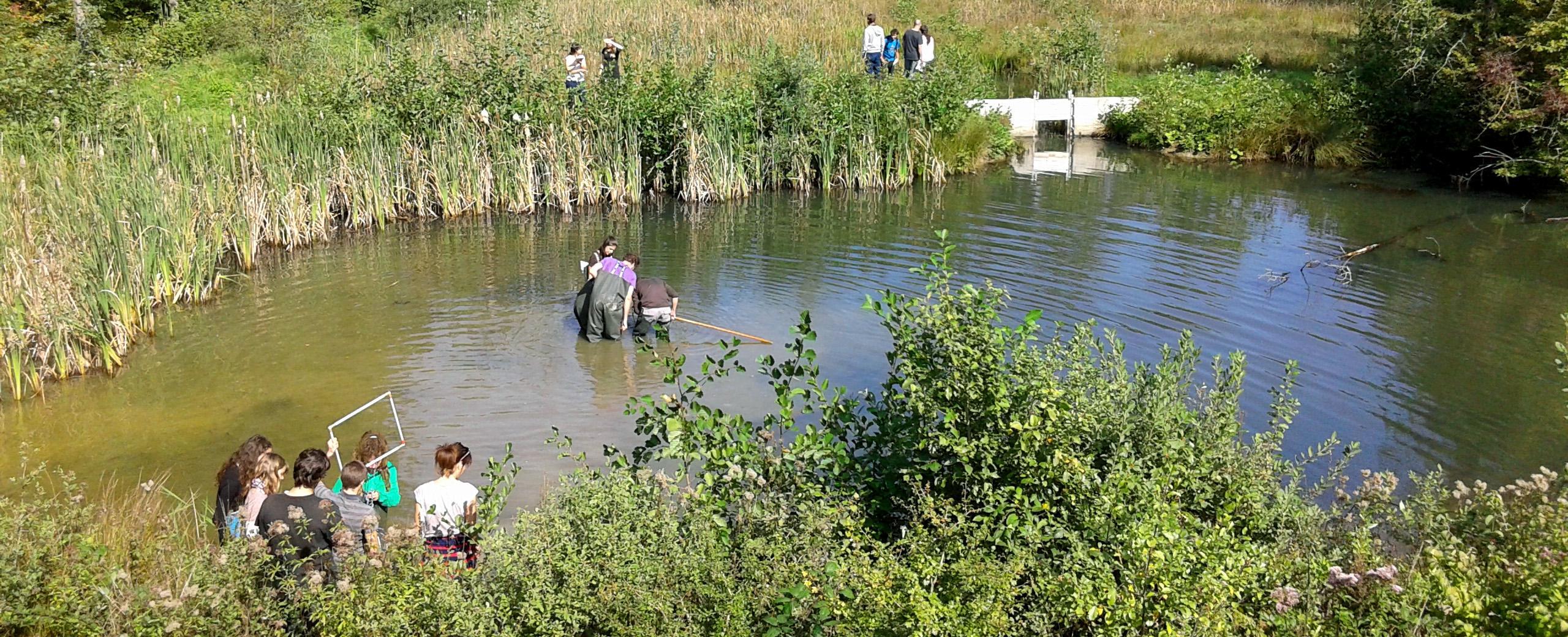 Gestion des ressources piscicoles