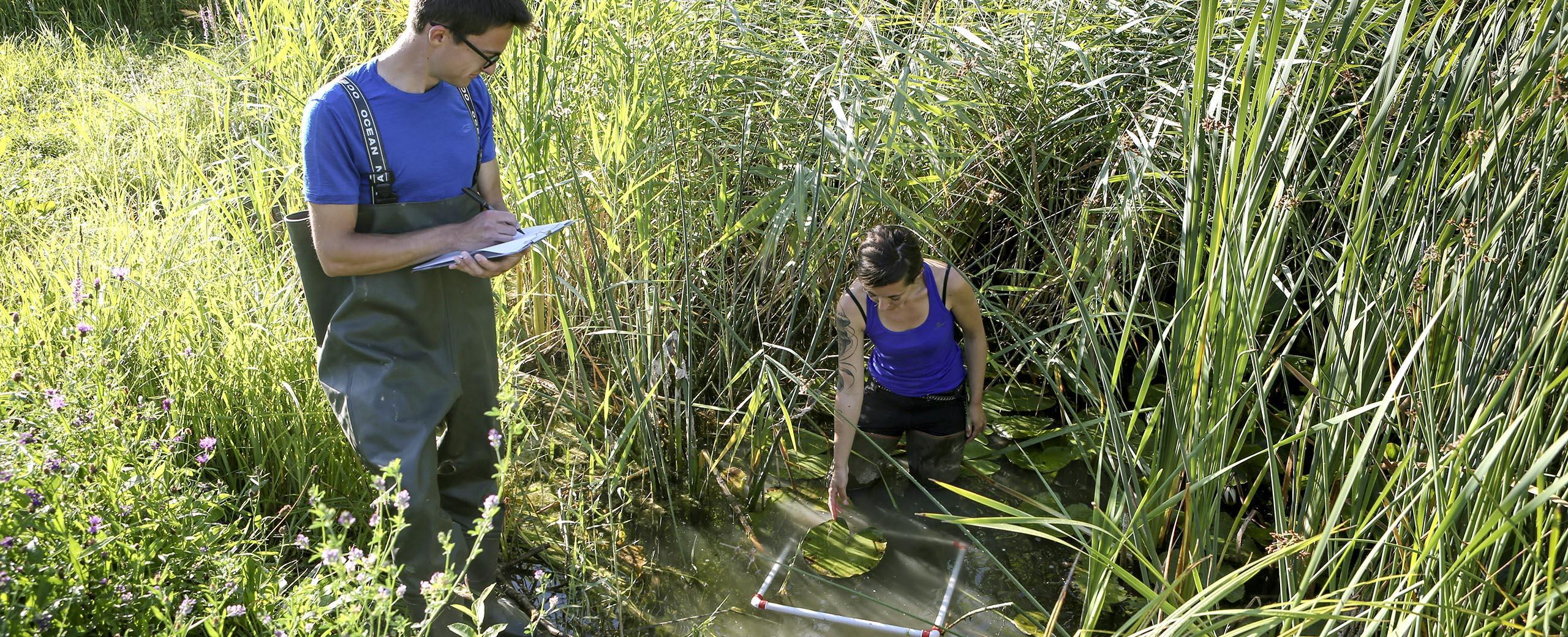 Evaluer la qualité des milieux naturels
