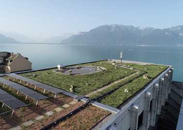 Photo roof Maria Belgia