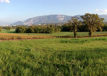 Photo projet paysage cantonale de Genève